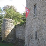 castle at Les Essarts