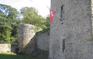 castle at Les Essarts