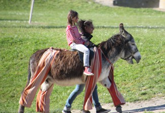 donkey on ile de re giving ride to children